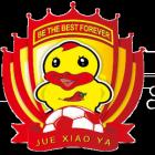 山东寿光蓝翼足球俱乐部